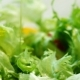 Pouring Dressing over Salad - VideoHive Item for Sale