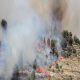 Forest Fire in Jeruslaem Israel - VideoHive Item for Sale