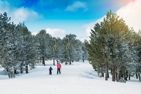 Family practicing ski at the ski resort - Stock Photo - Images