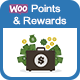 Best Points and Rewards Plugin for eCommerce Websites!