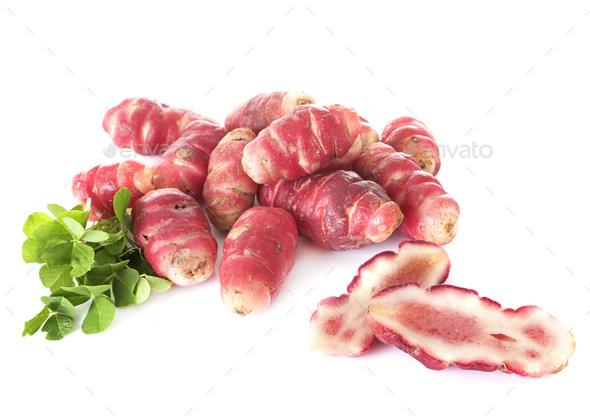 Oxalis tuberosa - Stock Photo - Images