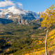 Aspen grove at autumn in Rocky Mountains - PhotoDune Item for Sale