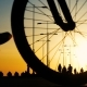 Silhouette of a Man on Bicycle Riding in Park at Sunset - VideoHive Item for Sale