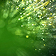 Light Green Particles Background - VideoHive Item for Sale