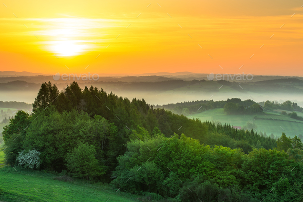Green fields at sunrise in mist - Stock Photo - Images