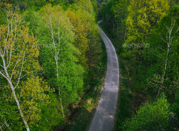 Asphalt road trough forest,from above - Stock Photo - Images
