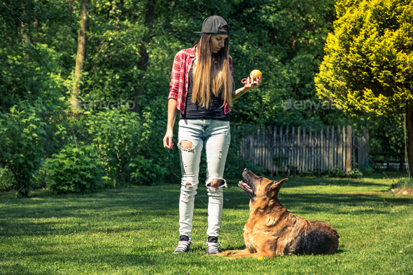 Authentic casual woman teaching dog obedience - Stock Photo - Images