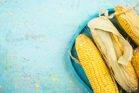 Whole corn cob on vibrant table,copy space - Stock Photo - Images