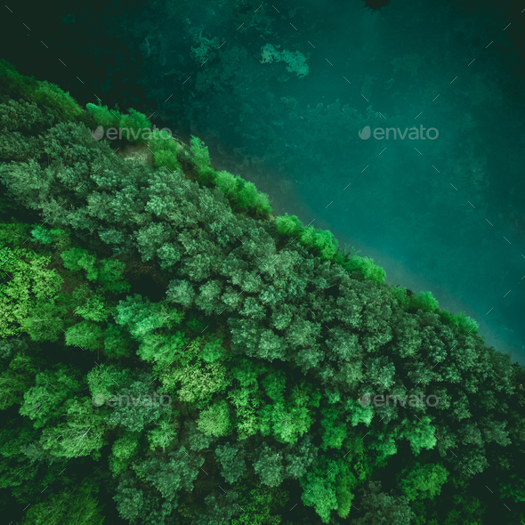 Diagonal forest and lake border, drone view from above - Stock Photo - Images