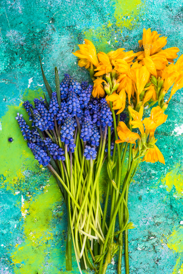 Freshly cut spring flowers from garden - Stock Photo - Images