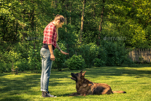 Young woman tell dog to lay down on grass,obedience training - Stock Photo - Images
