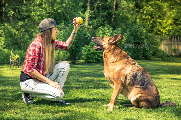 Young lady teach her dog obedience - Stock Photo - Images