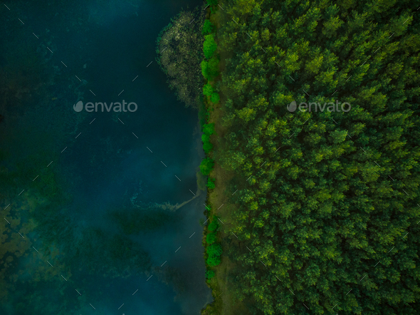 Aerial top down view over forest and lake - Stock Photo - Images