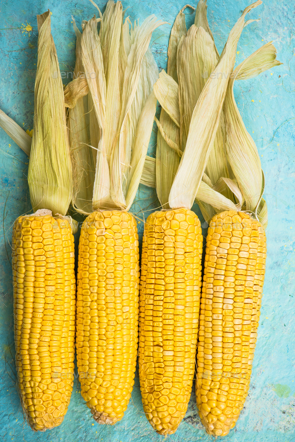 Colorful whole corn cob on blue table - Stock Photo - Images