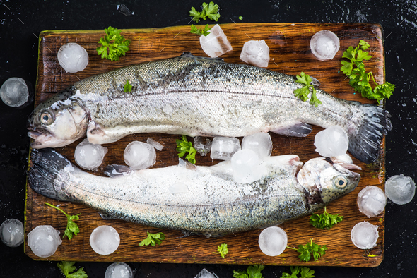 Freshly catched trout fish with parsley and ice cubes - Stock Photo - Images