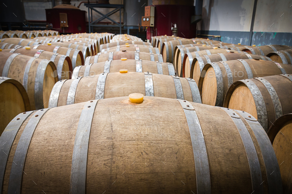 Wine barrels in the cellar of the winery-7 - Stock Photo - Images