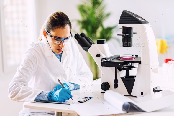 Researcher in laboratory - Stock Photo - Images