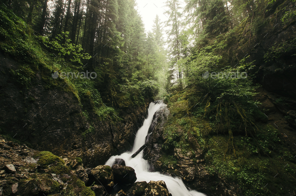 Mountain waterfall with green vegetation after rain - Stock Photo - Images