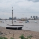 Sailboats and Boats in the Harbor, London - VideoHive Item for Sale
