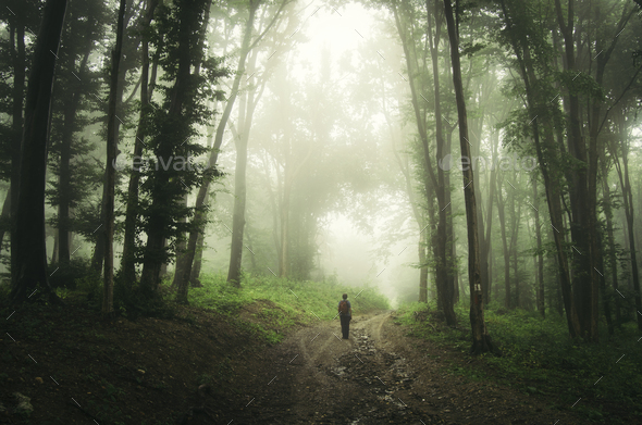Road through dark mysterious enchanted forest with man - Stock Photo - Images