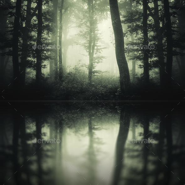 Dark lake in mysterious forest - Stock Photo - Images