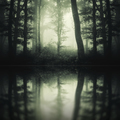 Dark lake in mysterious forest - PhotoDune Item for Sale