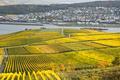 Rhien valley - PhotoDune Item for Sale