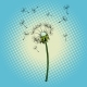 Dandelion Flower Fluff in the Wind - GraphicRiver Item for Sale