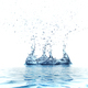 Water splash isolated on white background - PhotoDune Item for Sale
