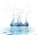 Water splash isolated on white background - PhotoDune Item for Sale