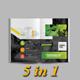 Best Brochure Bundle: 5 in 1 - GraphicRiver Item for Sale