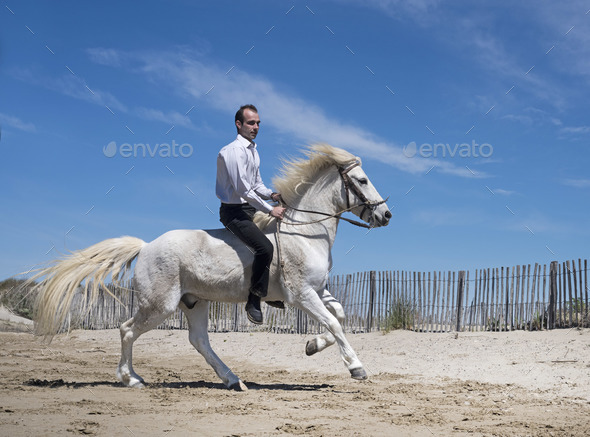 riding man on the beach - Stock Photo - Images