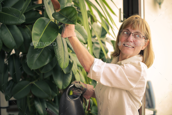 Woman watering plants - Stock Photo - Images