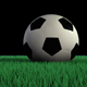 Soccer Ball On Grass - VideoHive Item for Sale