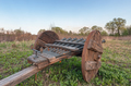 An old cannon with several gun barrels with a wooden carriage, a side view - PhotoDune Item for Sale