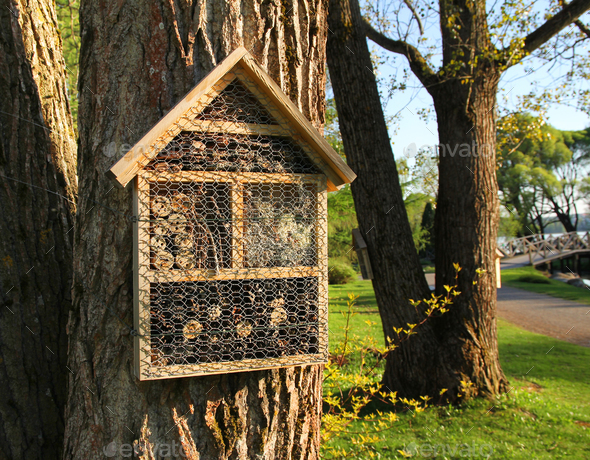 Insect hotels on garden trees - Stock Photo - Images