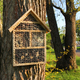 Insect hotels on garden trees - PhotoDune Item for Sale