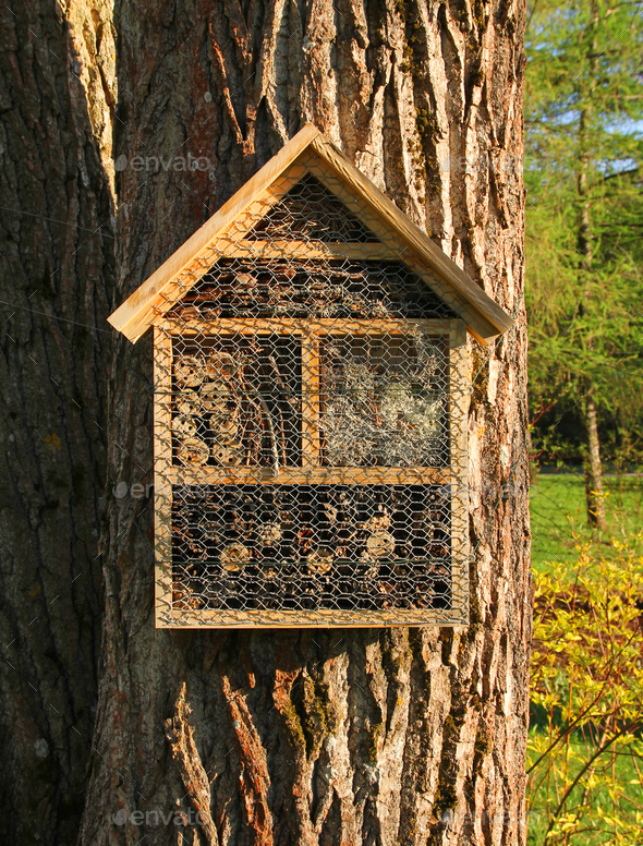 Insect hotel front view - Stock Photo - Images