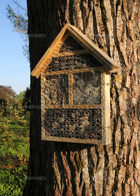 Insect hotel on tree trunk - Stock Photo - Images