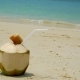 Coconut with a Straw on the Ocean - VideoHive Item for Sale