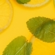 Video of Fresh Mint Leaves and Orange Slices Floating in Lemonade - VideoHive Item for Sale