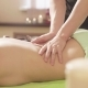 Massagist Doing Massage of the Woman's Back - VideoHive Item for Sale