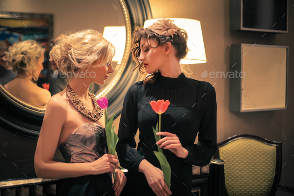 Two elegant girls - Stock Photo - Images
