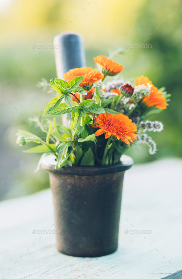 Bunch of fresh flowers  - Stock Photo - Images