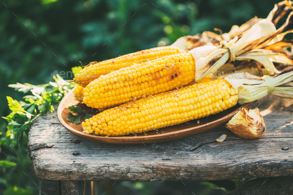 Grilled corn  - Stock Photo - Images