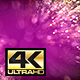 Fuchsia Particles Background 4k - VideoHive Item for Sale