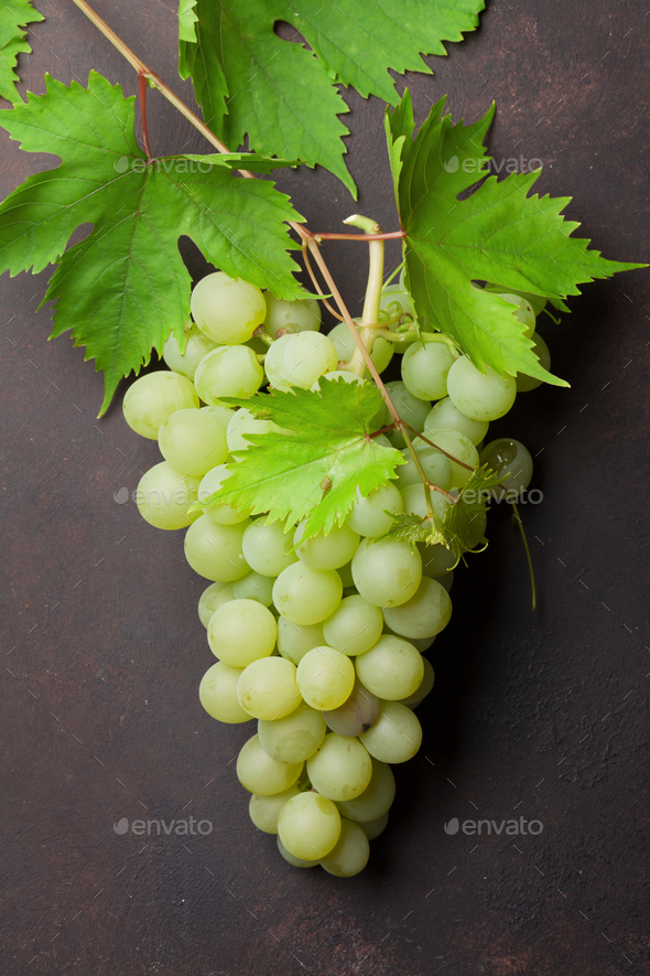 White grapes - Stock Photo - Images