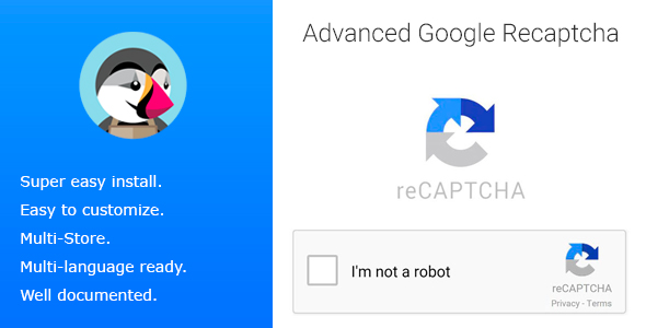 Advanced Google Recaptcha