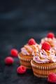 Raspberry and caramel cupcakes on dark background - PhotoDune Item for Sale