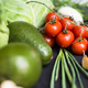 Fresh vegetables: cabbage, avocado, tomato, rosemary, garlic, mushrooms, leeks - PhotoDune Item for Sale